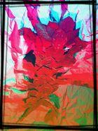 homme fleur en couleur
