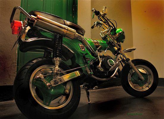 Honda Dax St50 Bj.77