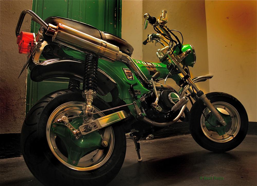 honda dax st50 foto bild autos zweir der motorr der motorrad legenden bilder auf. Black Bedroom Furniture Sets. Home Design Ideas