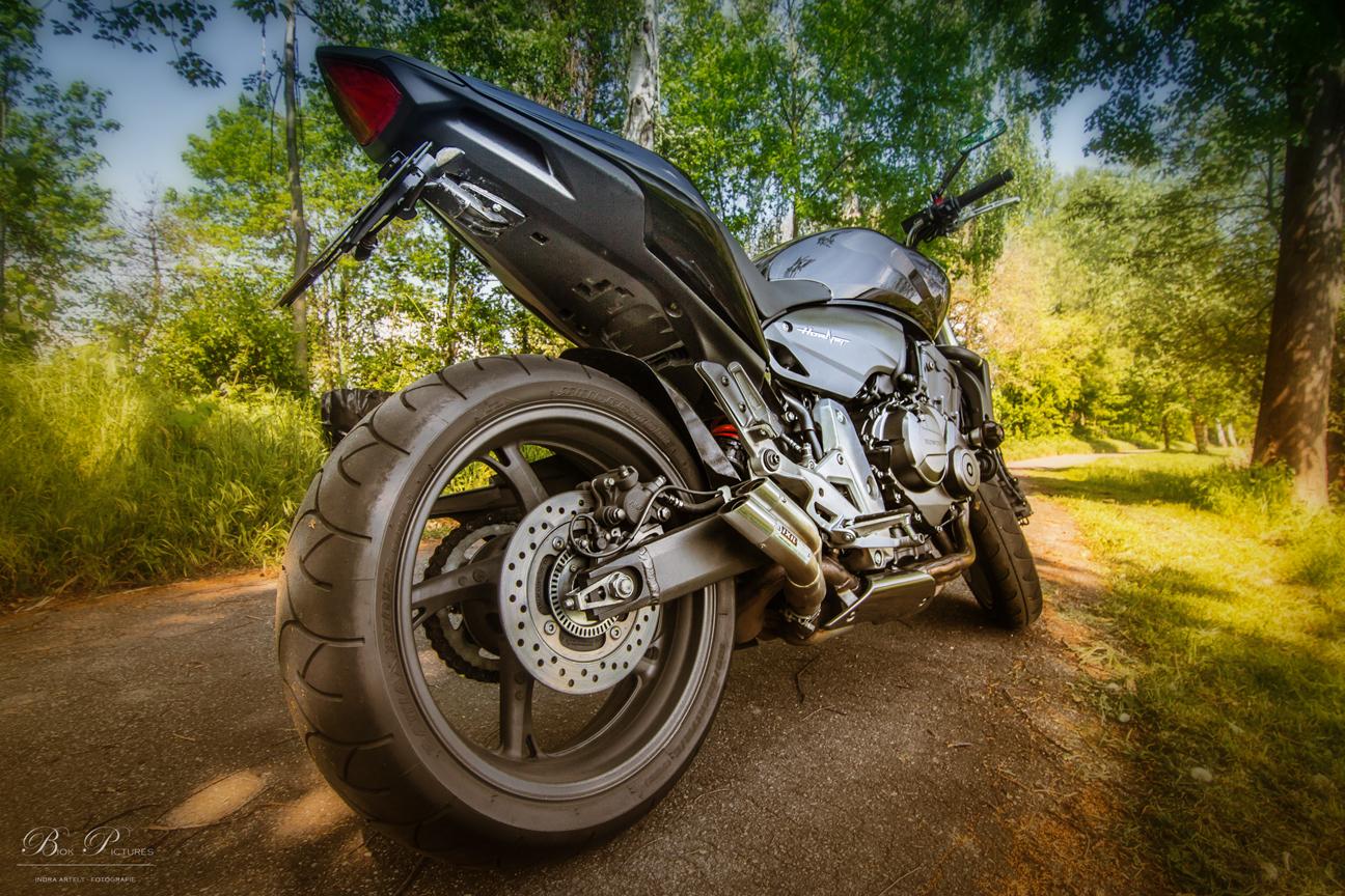 Honda Hornet -3-
