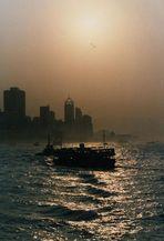 Hong Kong diesig