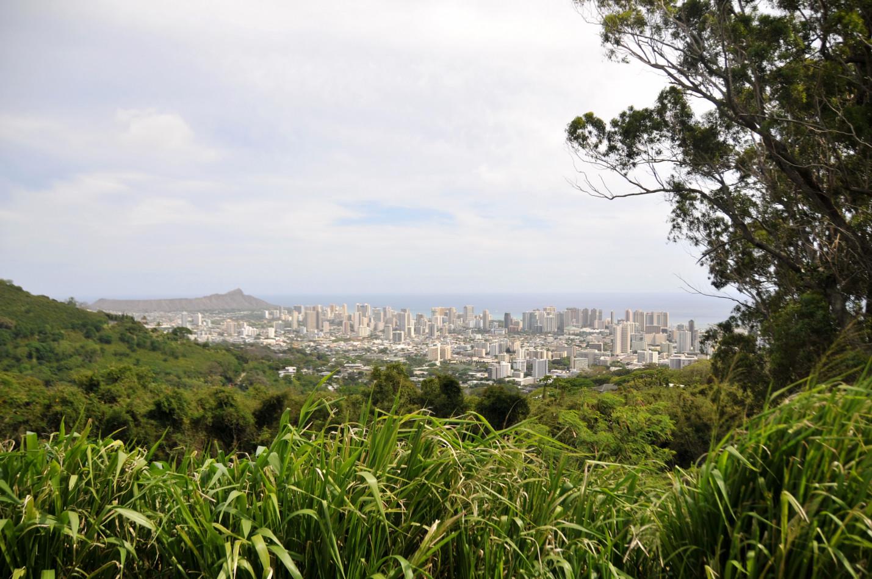 Honolulu from Tantalus Drive