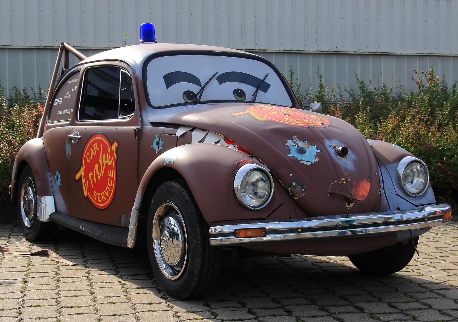 Hook-Käfer