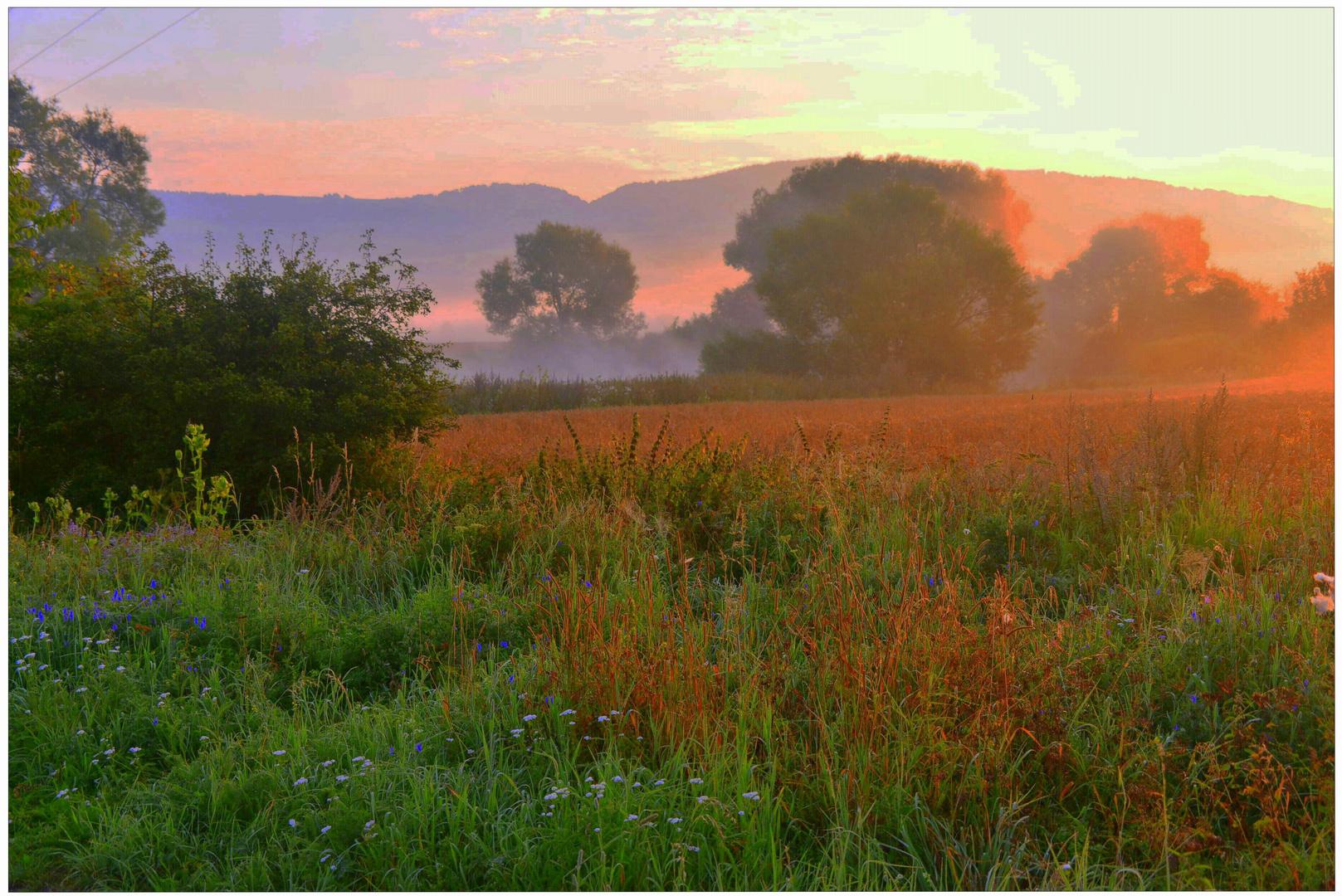Hora matutina en el lago II (Morgenstunde am See II)