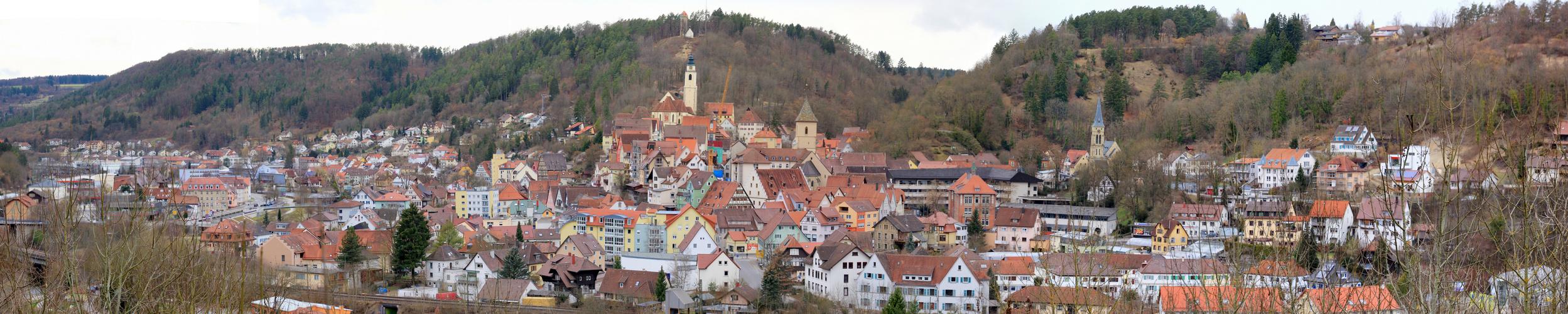 Horb am Neckar - Panorama