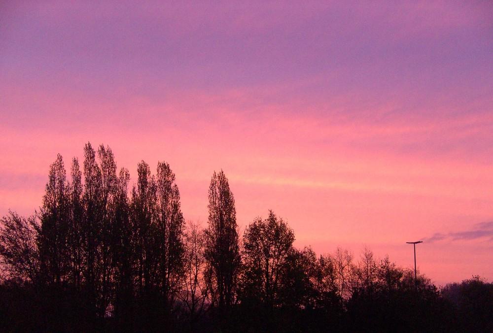 Horizon teinté de rose
