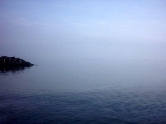 ~~~Horizont~~~