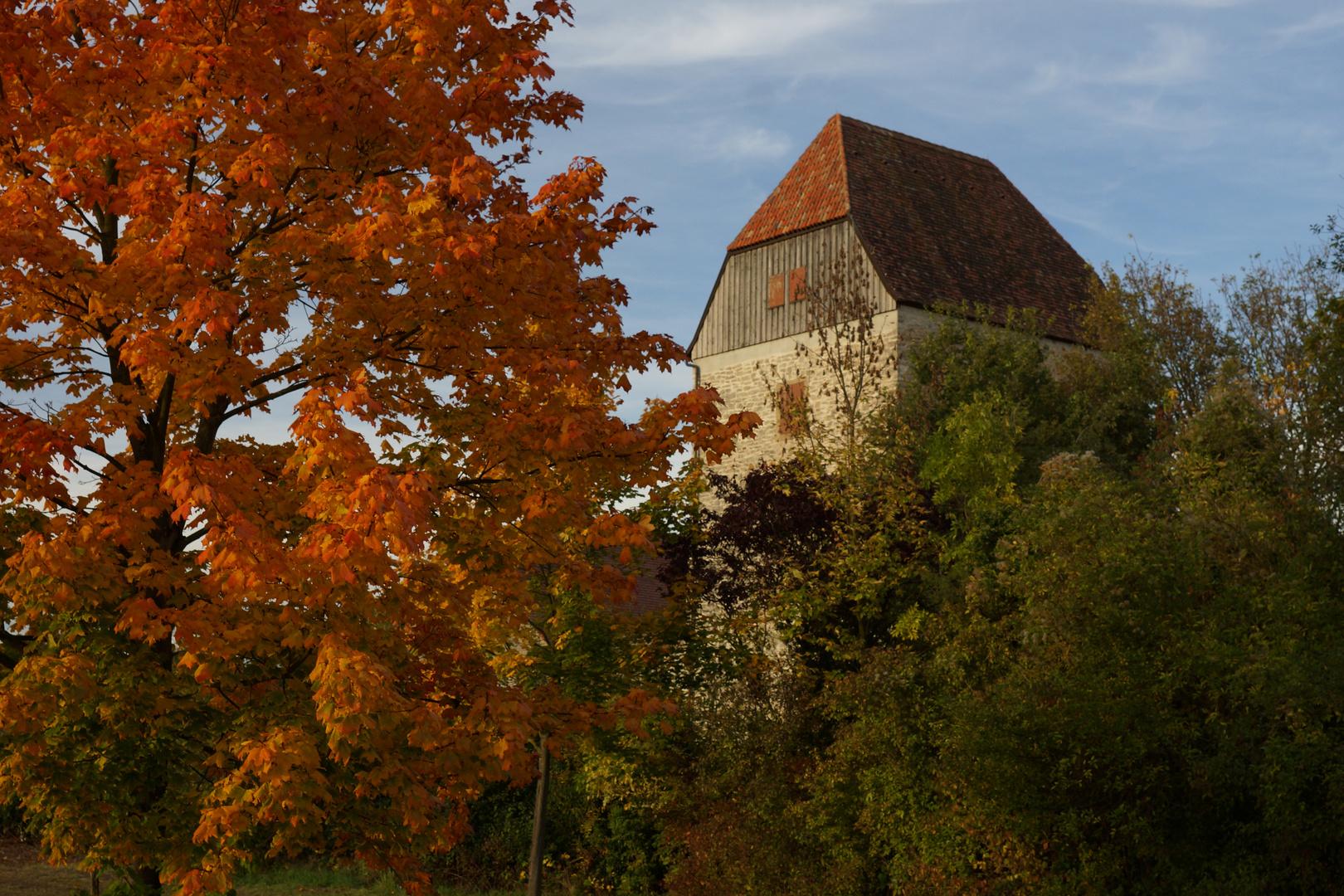 """Horkheimer Burg im """"Goldenen Oktober""""-Kleid"""