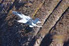 Hornet FA-18 in Action auf der Axalp