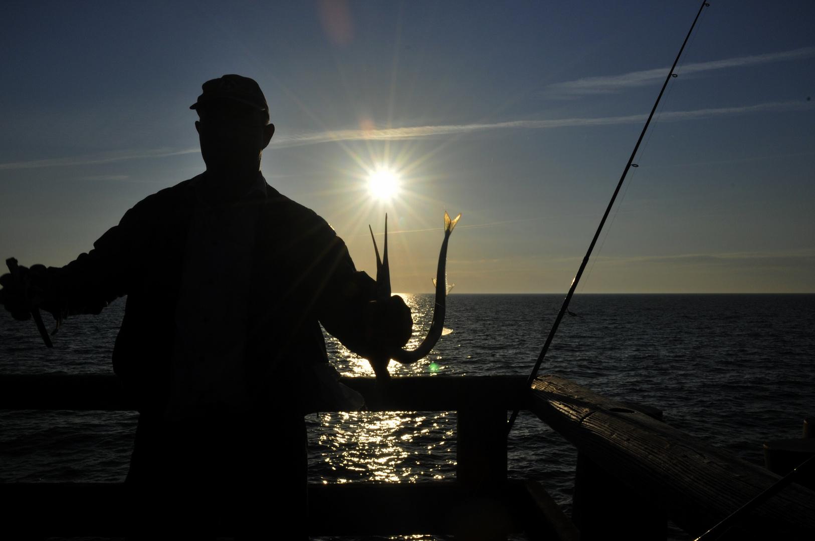 Hornfischfang an der Ostsee