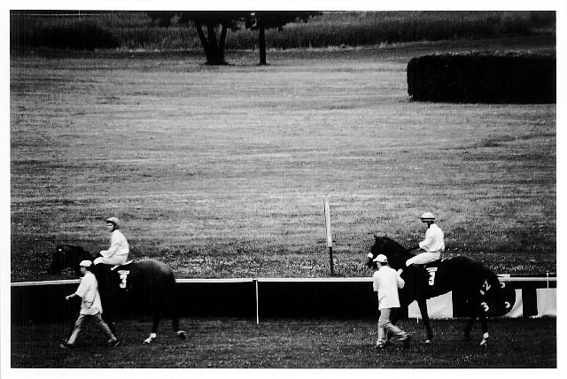 Horse-racing [2]