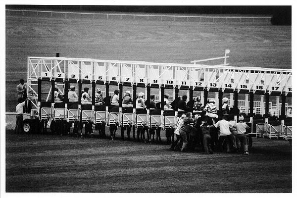 Horse-racing [3]