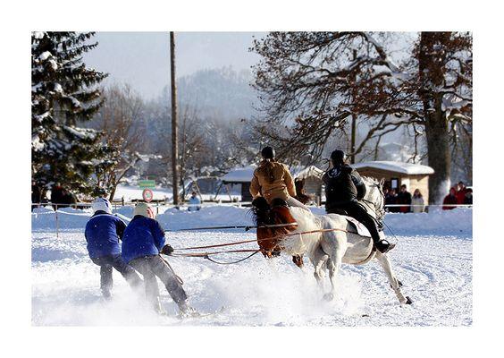 horse-ski