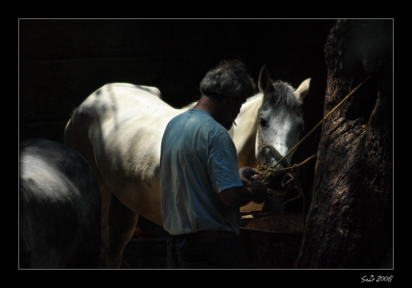 Horse & The Gipsy