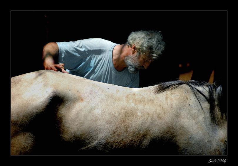 Horse & The Gipsy II