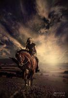 horse-woman III.
