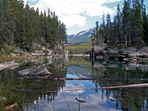 Horseshoe Lake - Jasper, Alberta
