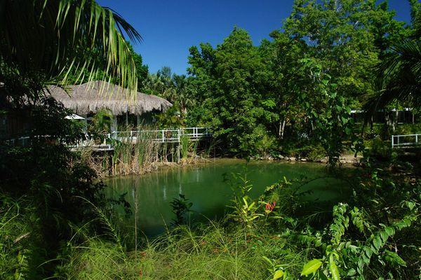 Hotelgelände Couples-Negril / Jamaica