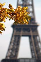 http://www.photos.book.fr