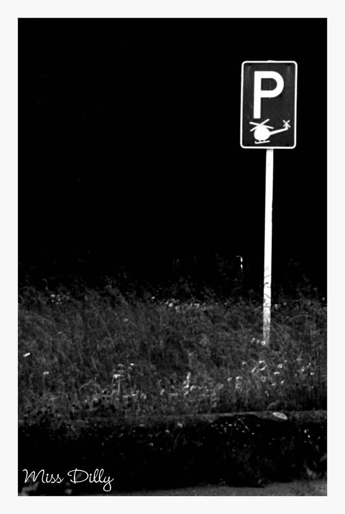 ~*°Hubschrauberparkplatz°*~
