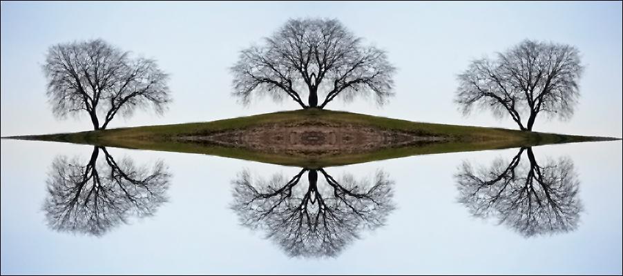 Hügel mit Baum