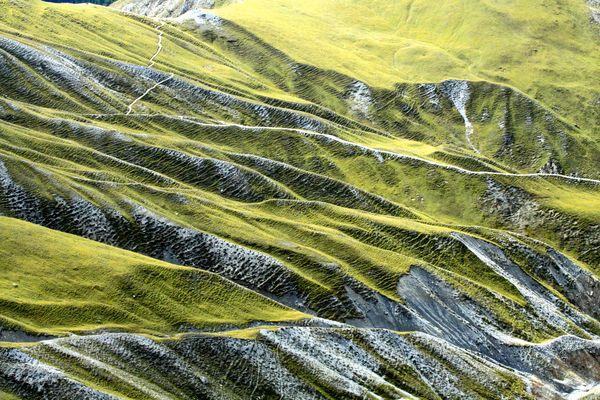 Hügelkette am Fuorcla Val dal Botsch (Nationalpark Schweiz)