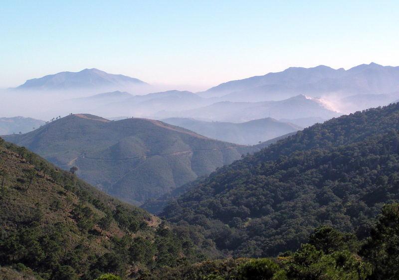 Hügellandschaft in den Cevennen