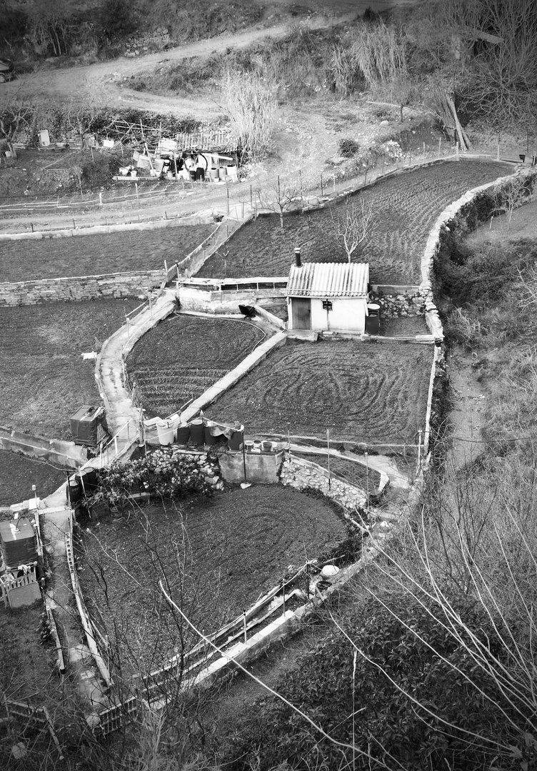 Huertos de Can Brunet a Castellar del Valles