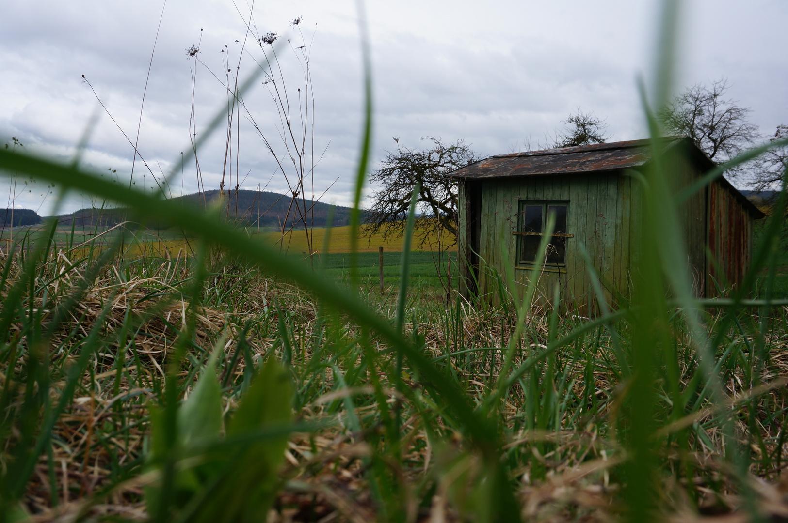 Hütte im Gras