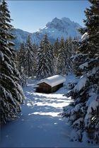 ~ Hütte im Winterwald ~