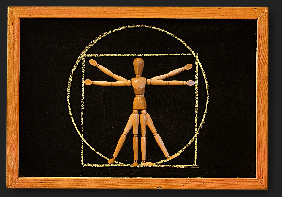 Hugo da Vinci oder: ''Der vitruvianische (Holz-)Mann''