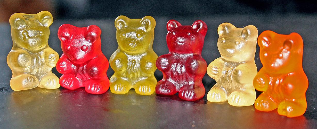 huhu wir sind die sylter bären und verabschieden uns jetzt erstmals für ne weile