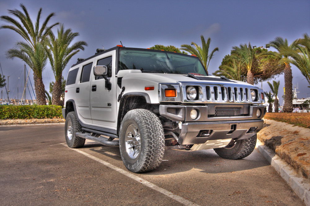 Hummer 001