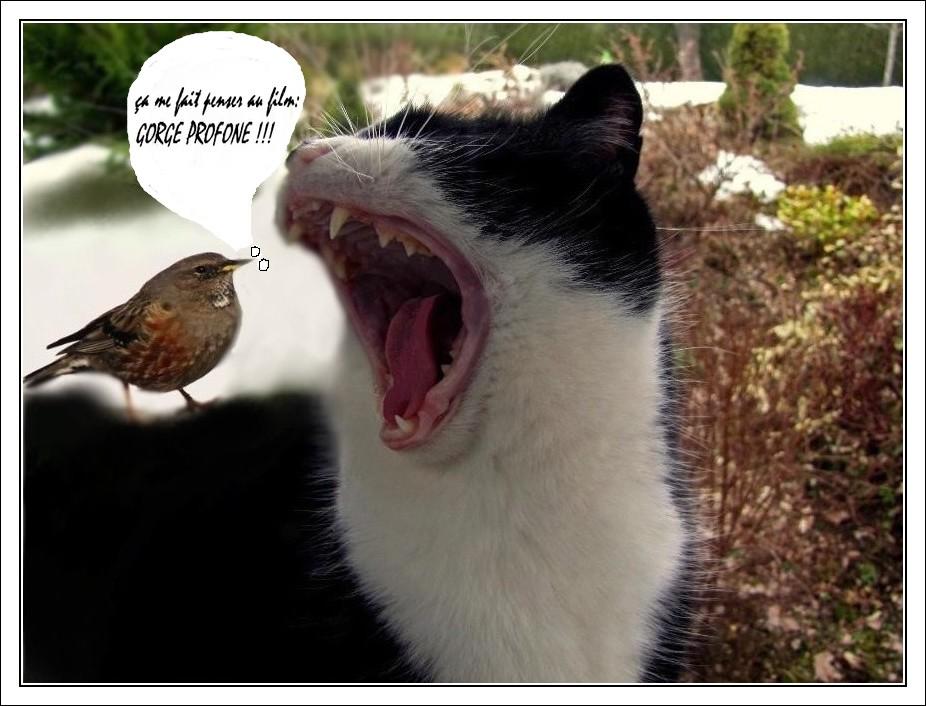 humour !!!