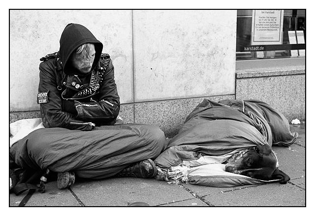 Hund im Schlafsack - Stuttgart 2006