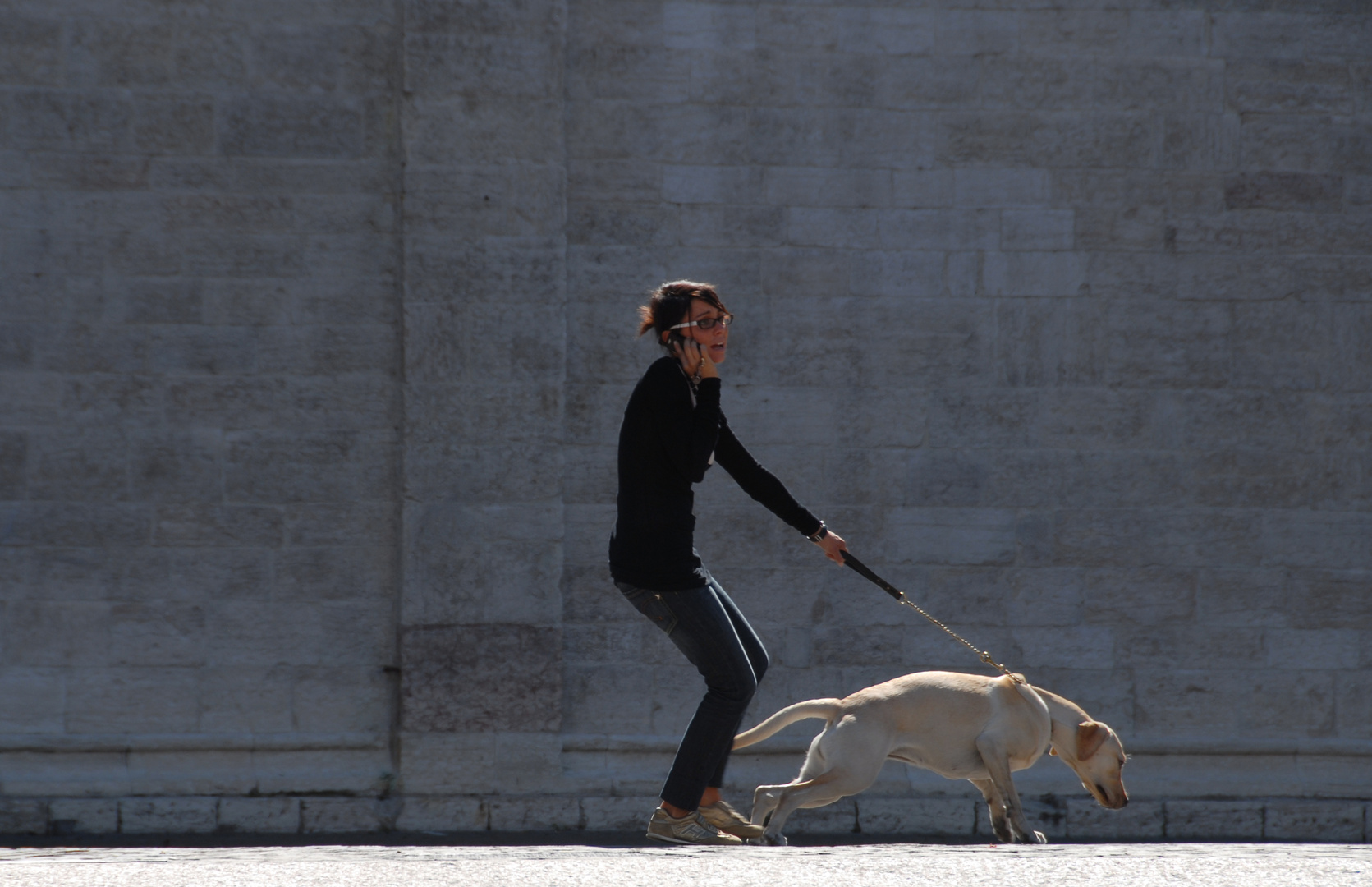 Hund mit Frau