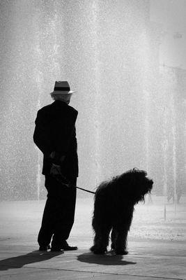 Hund mit Mann