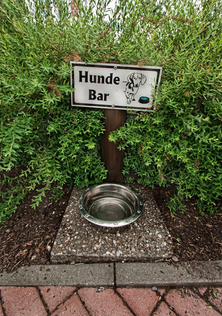 Hunde Bar in Winterberg