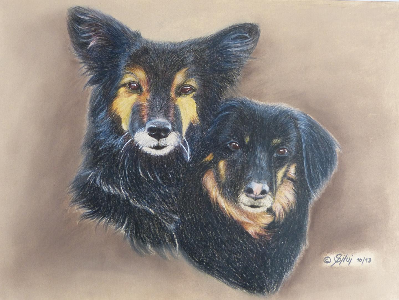 Hunde-Doppelportrait