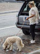 Hundefreundin