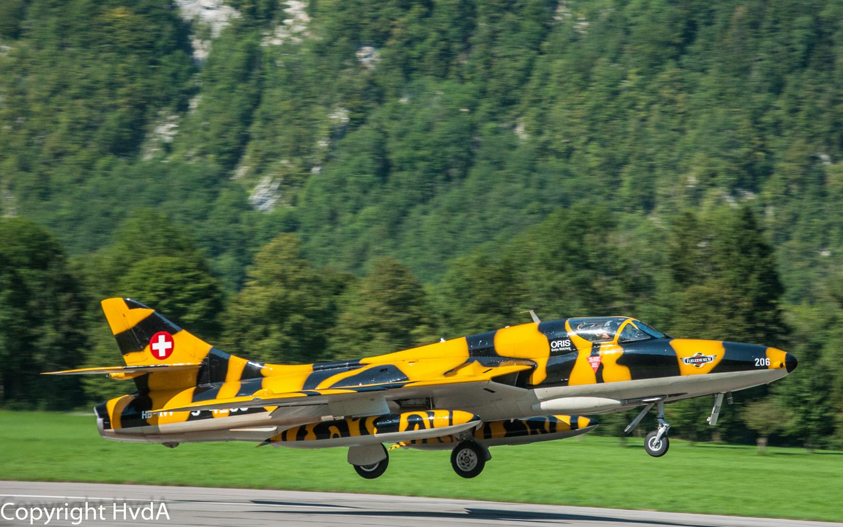Hunter-Tiger