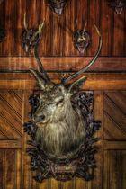 Hunters Hotel - Cerf