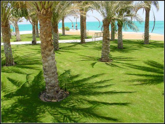 Hurghada 2005