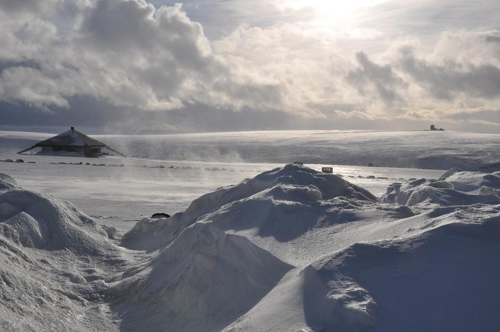 Hurtigrute 4 - am Nordkap