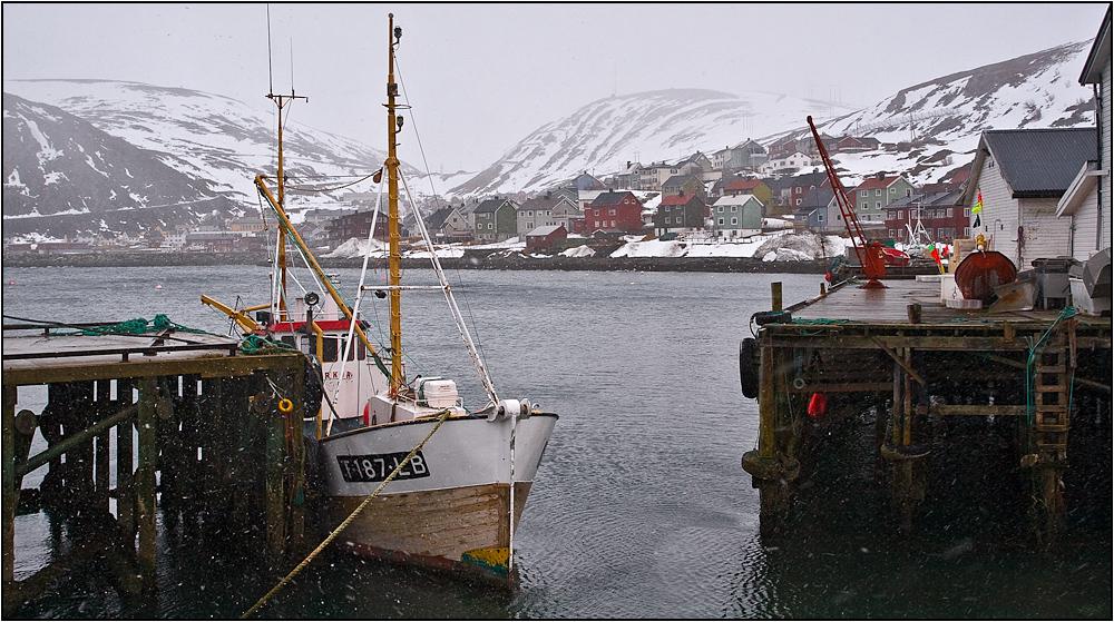 Hurtigrute Mai 2008 - 11