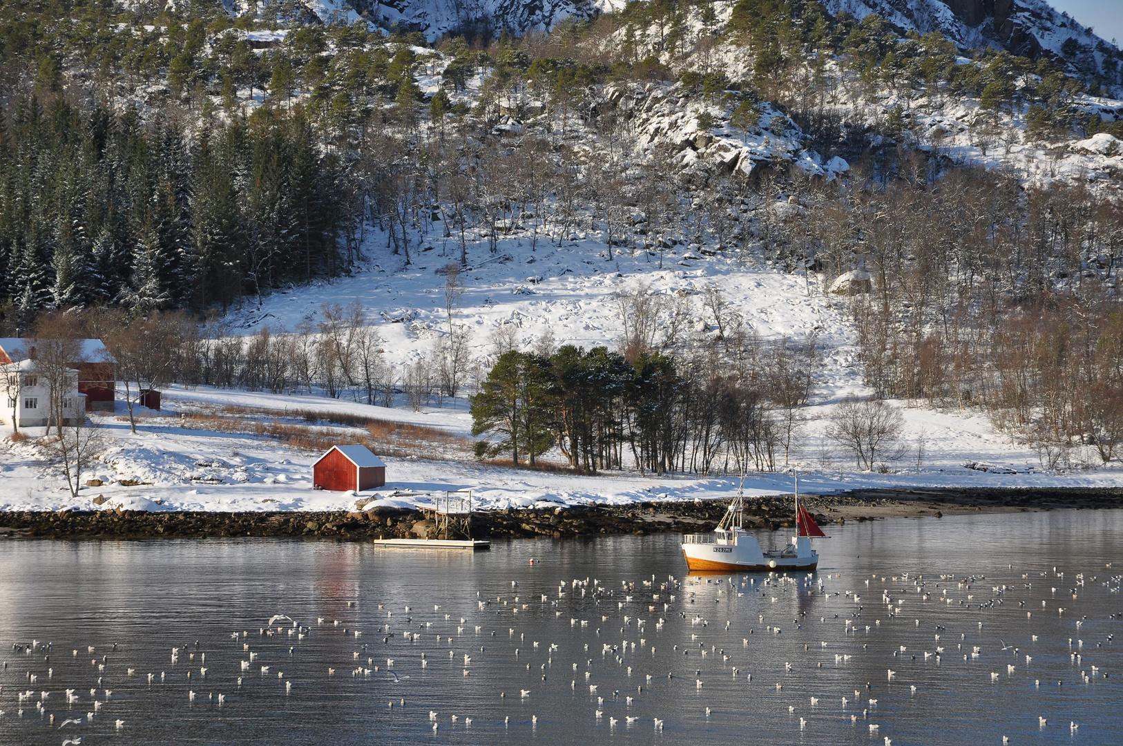 Hurtigrute2