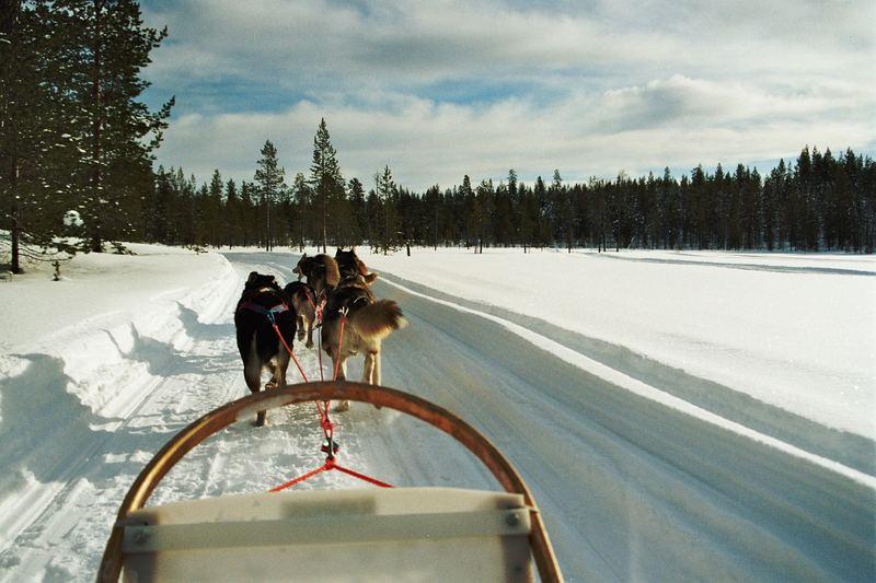 Huskytour in finnisch Lappland (Äkäslompolo)