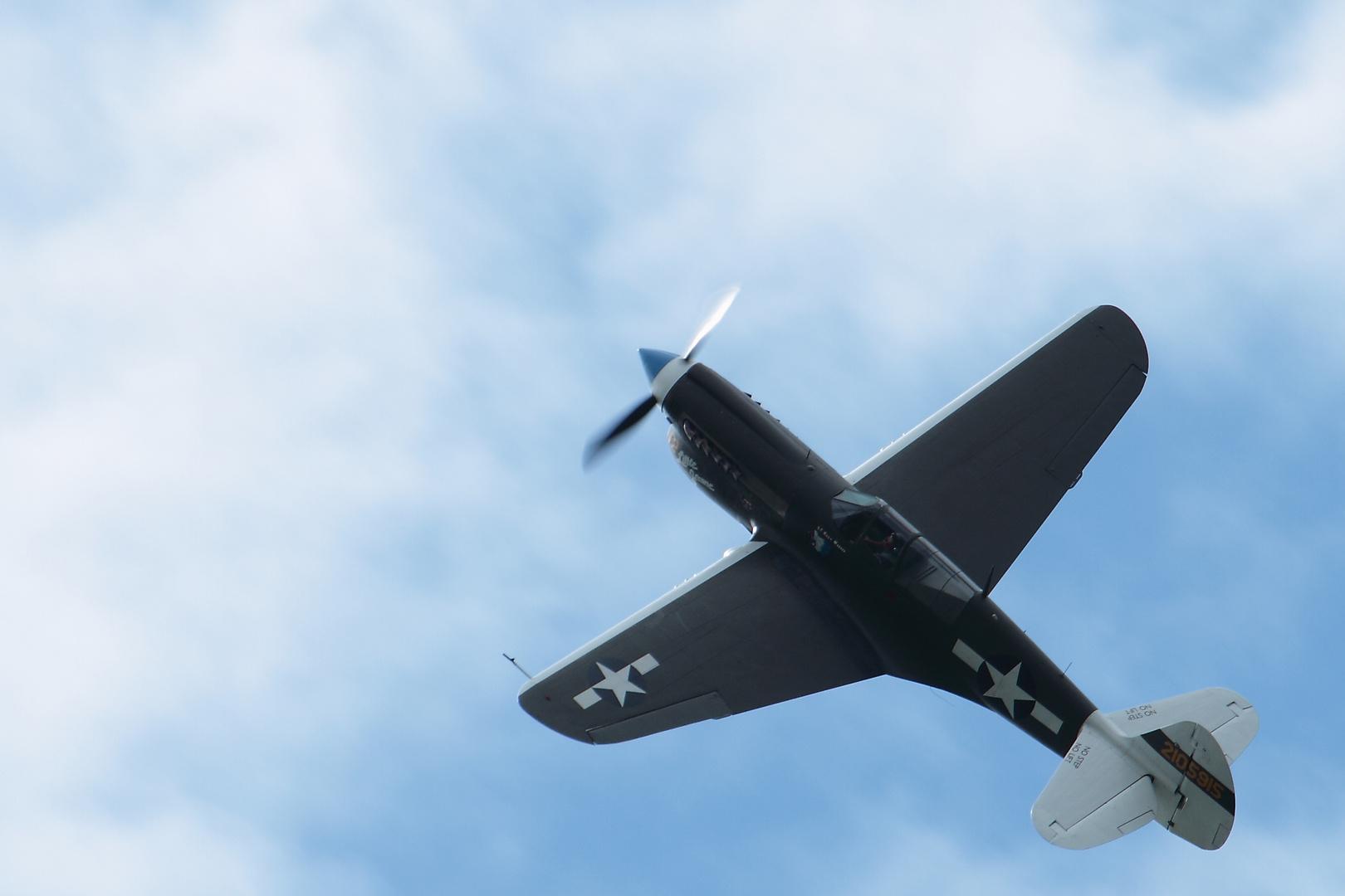 HW 2013 P40 Warhawk