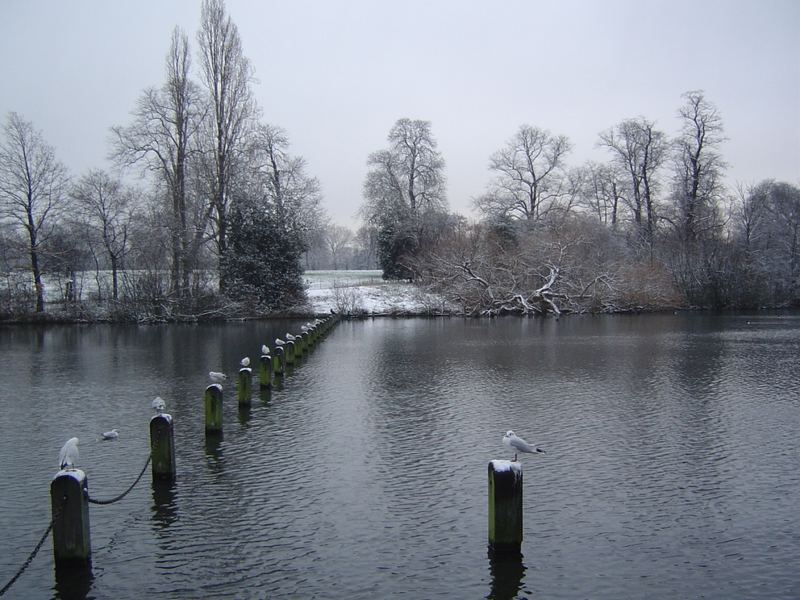 hyde park in white_2