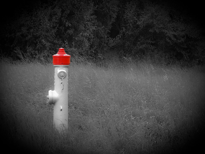 hydrant schwarz weiss rot foto bild monochrom bearbeitungs techniken digiart bilder auf. Black Bedroom Furniture Sets. Home Design Ideas